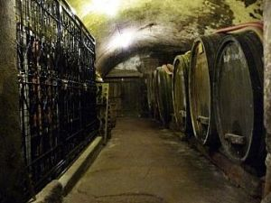 Bourdy wine cellar in Jura