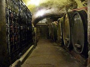 Bourdy wine cellar in Jura