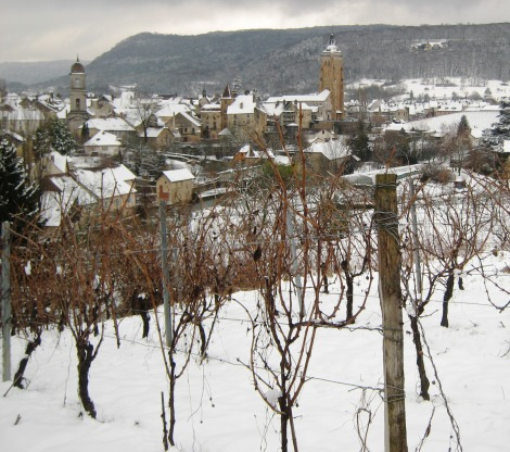 Arbois vines in the snow