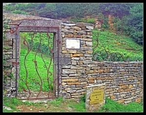 vine conservatory
