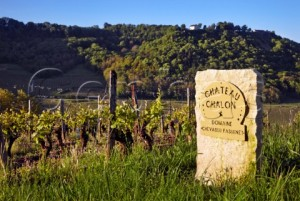 A typical stone marker showing the vineyards of Domaine Chevassu-Fassenet in the AOC vineyards of Château-Chalon ©Mick Rock/Cephas