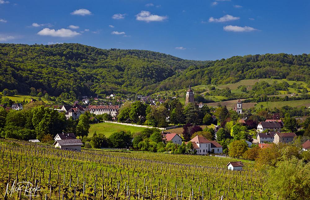 Arbois vineyards